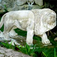 zoologico de piedra .com - The first work - the smiling lion
